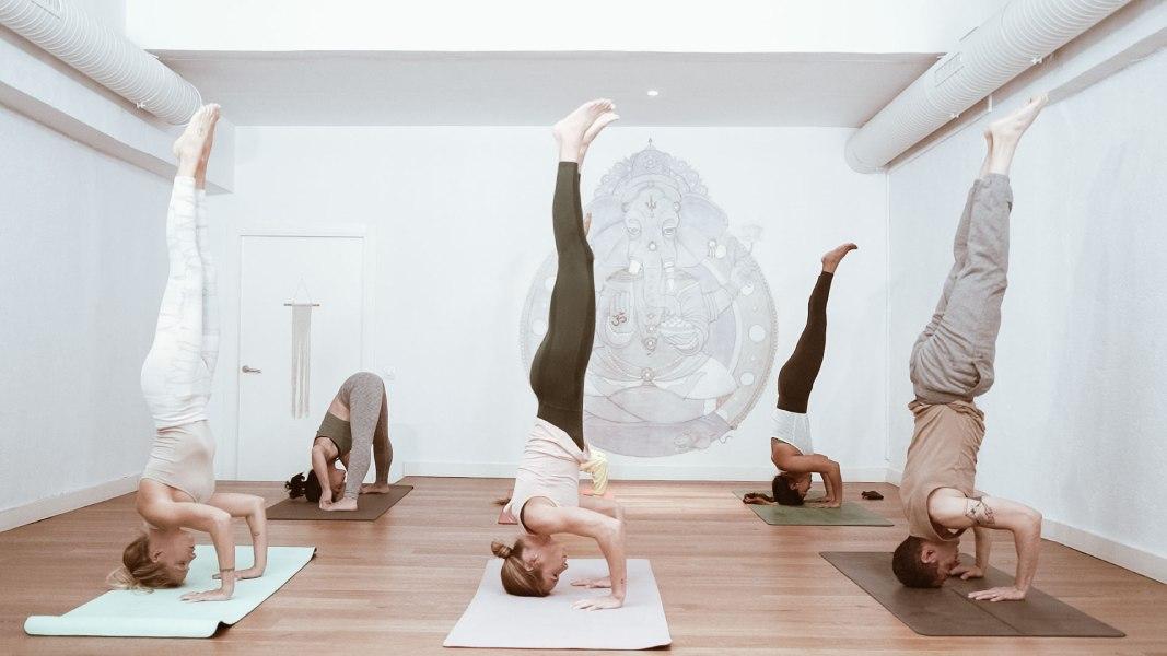 clases yoga principiantes